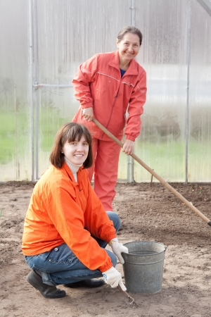 Happy women works at greenhouse in spring photo