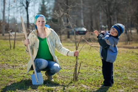 perk: family planting tree with  spade outdoor Stock Photo
