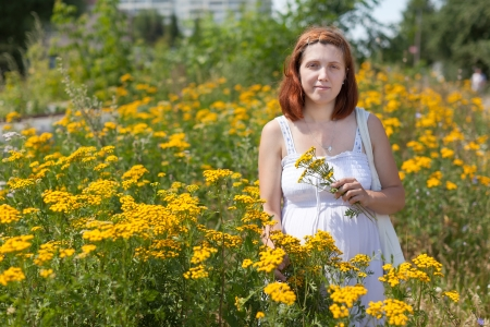 gravida: pregnant woman in tansy plant