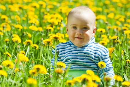 happy baby sitting in flowers meadow photo