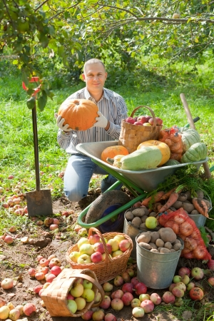 Happy man with vegetables harvest in september garden photo