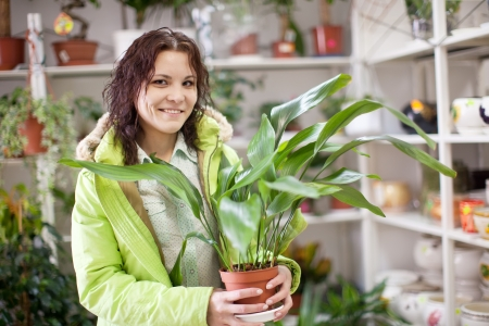 Woman with aspidistra flower in a flower shop Stock Photo