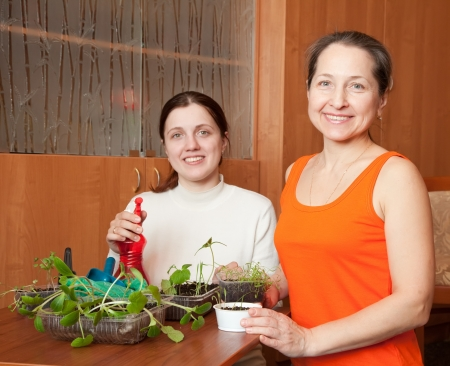 Happy women with various seedlings at home  photo