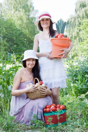 average age: Two happy women with vegetables harvest in garden