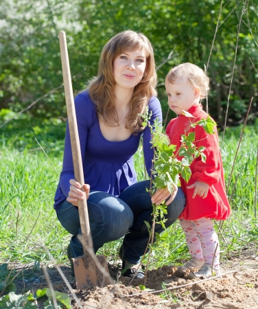 Mother and her baby girl planting raspberry in spring Stock Photo - 15640748