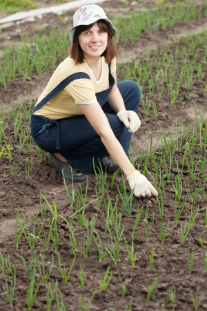 Female gardener at  onion plant in spring photo
