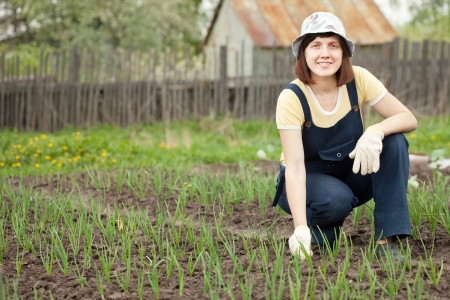 eradication: Young  woman  working at  onion plant in spring