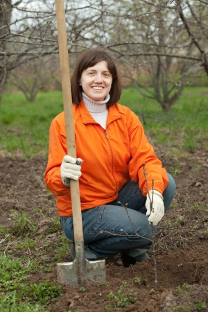 Young woman sets tree in spring garden photo