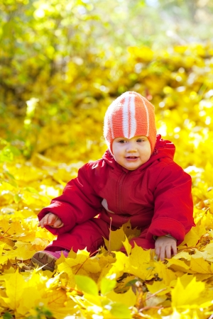 year-old child   sitting on maple leaves in autumn park Stock Photo - 15870549