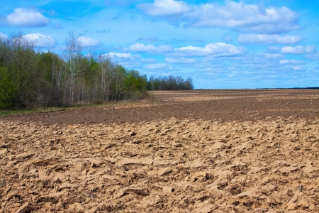 tillage: Fresh tillage ploughed field  under cloudy sky