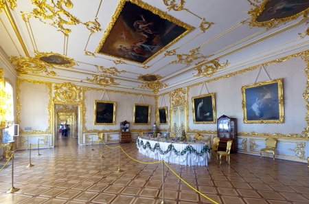 pushkin: ST.PETERSBURG, RUSSIA - AUGUST 2: Interior of Catherine Palace in August 2, 2012 in St.Petersburg, Russia. The former imperial palace.  Building is laid in 1717 on orders of Catherine I. Now a museum