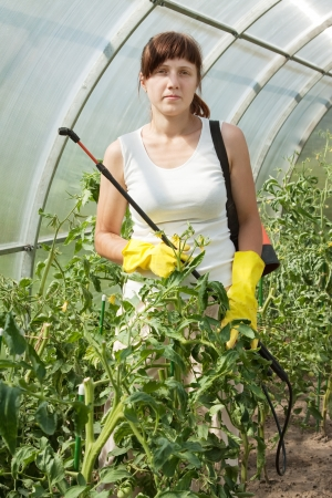 insecticidal: Female gardener working in greenhouse with knapsack garden spray