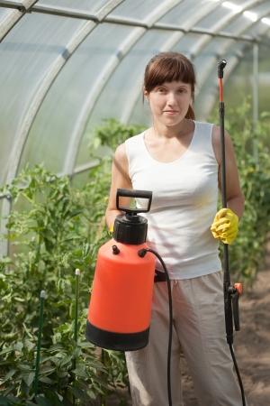 insecticidal: Female gardener   with knapsack garden spray in hothouse