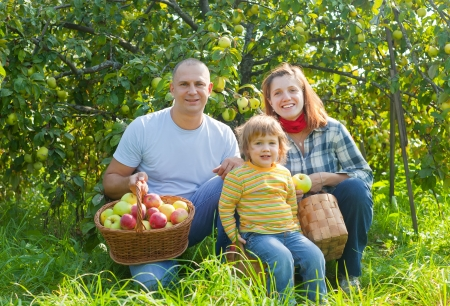 Happy parents and child with baskets of harvested apples in garden photo