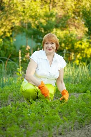 Happy mature woman working in her vegetable garden photo