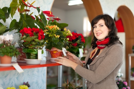 Woman chooses begonia in a flower shop Stock Photo - 16374665