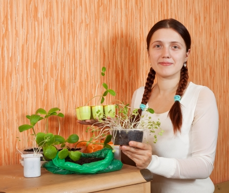 Young woman with various seedlings at home photo