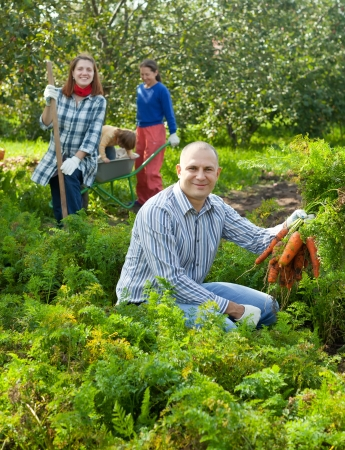 Happy family  harvesting carrots in vegetables garden photo