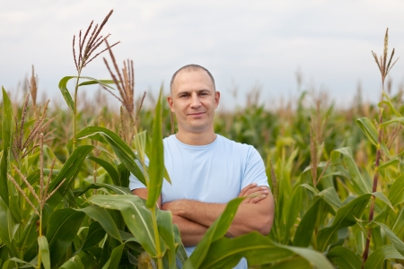 agriculturalist: successful agriculturist in field of corn  Stock Photo