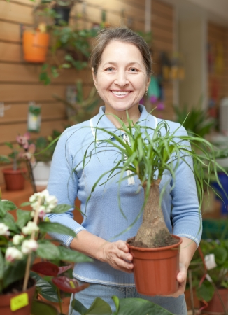 Female florist with Nolina plant at flower store  Stock Photo - 16884553
