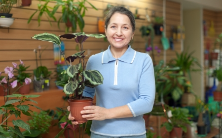 Happy mature woman chooses Calathea in pot at flower shop Stock Photo - 16970097