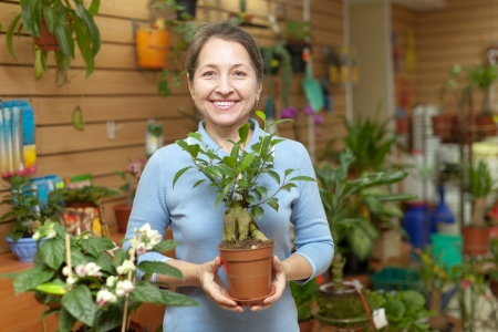 Happy mature woman chooses  ficus plant  Bonsai  in pot at flower shop photo