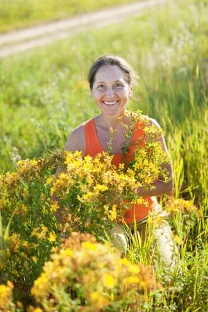 gathers: Donna matura che raccoglie le erbe a prato selvatico Archivio Fotografico