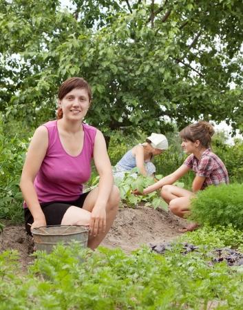 Three women working in her vegetable garden Stock Photo - 16884544