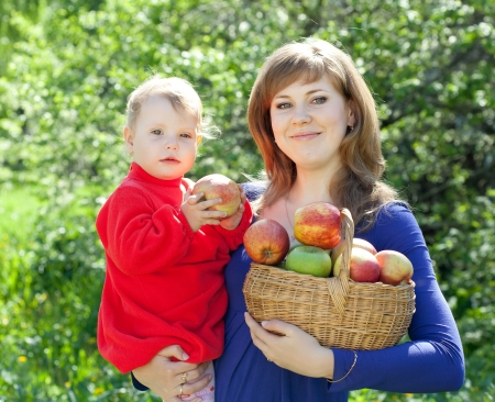 Happy  family  with apple harvest in orchard Stock Photo - 17123540