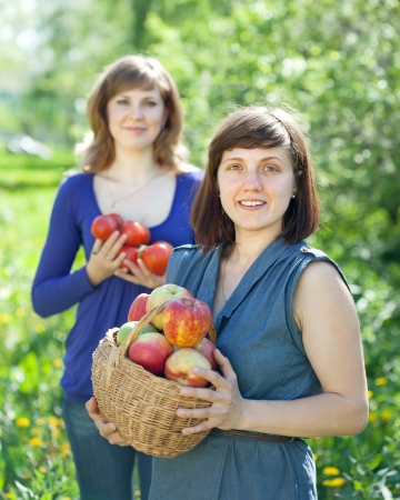 Happy young women with  harvest in orchard photo