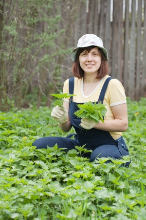 gathers: Woman gathers nettle in spring garden Stock Photo