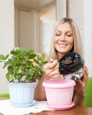 Smiling woman transplants Kalanchoe plant at home photo
