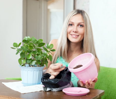 transplants: Happy young woman transplants Kalanchoe in flowerpot at home Stock Photo