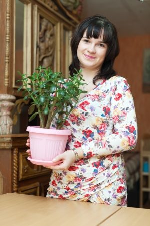 woman with  jade in flowering pot at home photo