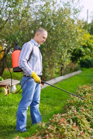insecticidal: Man works with garden spray  in the yard