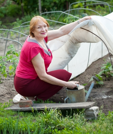polythene film: Mature woman working with hothouse at  vegetables garden Stock Photo