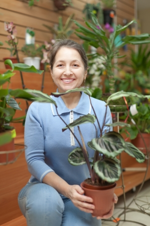Happy mature woman with Calathea plant in flower store Stock Photo - 17767335