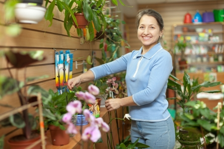 Happy mature woman with  Kalanchoe plant surrounded by different flowers in flower store Stock Photo - 17767295