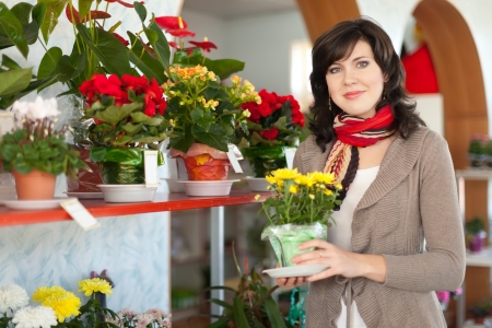 Woman chooses chrysanthemum in a flower shop Stock Photo - 17825340
