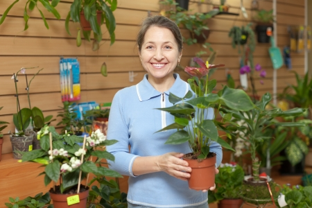 Woman with anthurium flower in flower store Stock Photo - 17878512
