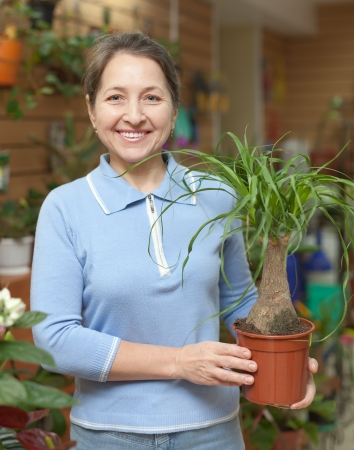 Happy mature woman looks Nolina in pot at flower shop Stock Photo - 17878510