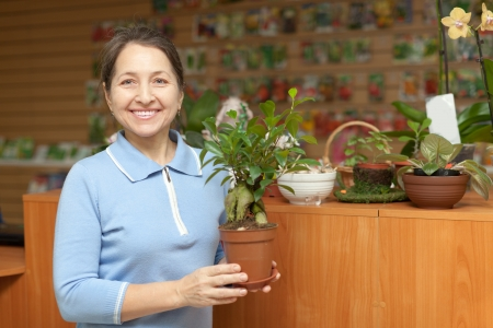 Happy mature woman with  ficus plant (Bonsai) in pot at flower store Stock Photo - 17878620