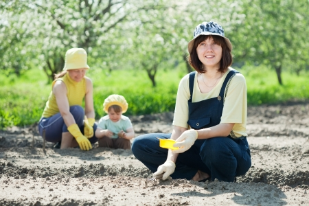 agriculturalist:  Happy women with child works at vegetables garden in spring