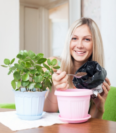 Smiling woman transplants Kalanchoe plant in flowerpot at her home photo