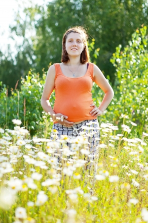 pregnant  woman at camomile plant  in summer sunny day photo