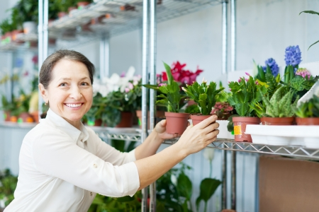 Happy mature woman chooses Schlumbergera plant at flower shop Stock Photo - 18654960