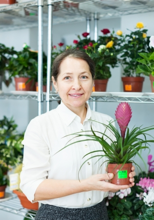 woman in flower shop near the shelves with Tillandsia Stock Photo - 18654957