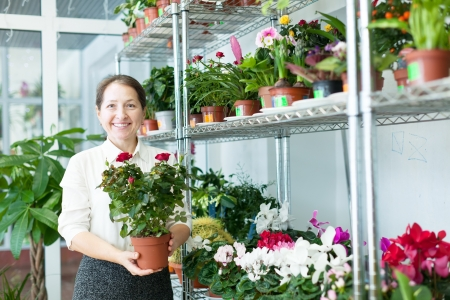 Happy mature woman chooses flower at flower store Stock Photo - 18714725