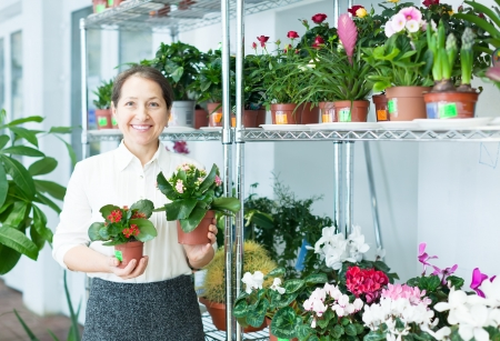 Happy florist with kalanchoe at flower store Stock Photo - 18714723