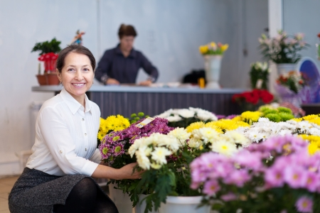 mature woman chooses chrysanthemum at flower store Stock Photo - 18714728